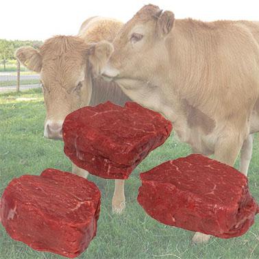Haas biefstuk